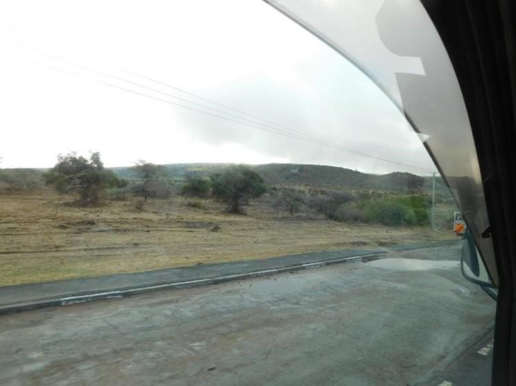 driving past savannah